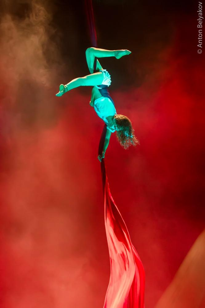 Серебряный призёр Международного Циркового Фестиваля