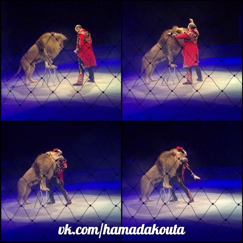 Хамада Кута - Дрессировщик нильских львов  и тигров.